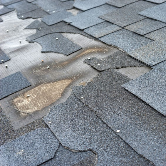 shingle roof leak