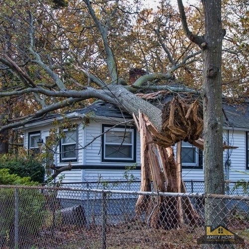 Storm Damage, Fallen Tree, Roof Storm Damage Repair, Amity Home Maintenance Solutions